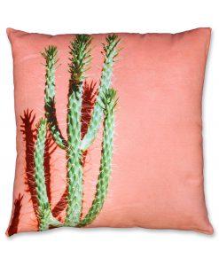 Cactus cushion Peach HR